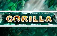 Игровой аппарат Gorilla